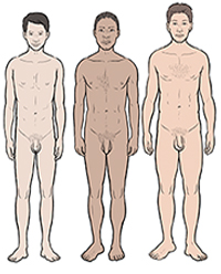 Three boys showing differences in development at age 18.