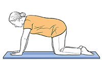 Woman on all fours with back straight.
