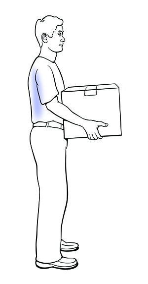 Side view of a man safely lifting a box. After standing, the box is kept close to the body and the back is straight.