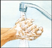 Image of washing hands